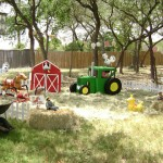 Down Home Barnyard Fun in Your Own Backyard