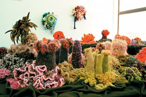 coral garden using succulents