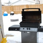 Time for a January Backyard BBQ!