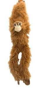 monkey hanging around