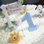 Tips For a 1st Birthday Party