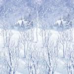 Winter Wonderland Party Ideas