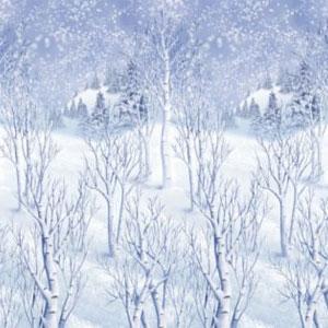 Winter Wonderland Christmas Theme Party